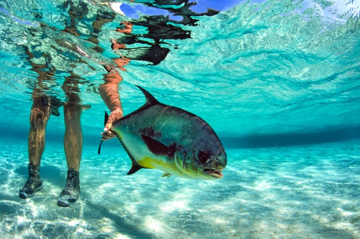 6 Best Fishing Destinations in the World - travel-gadgets
